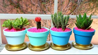 Diy- Plant Pots (decorate Your Home Or Space)