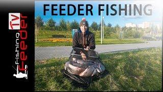 ✅VLOG#13 Ночная рыбалка. Лещ, Сазан, Карась на фидер. 2017 Feederfishing.tv