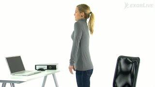 Kiropraktorgruppen - Rulle på skuldrene