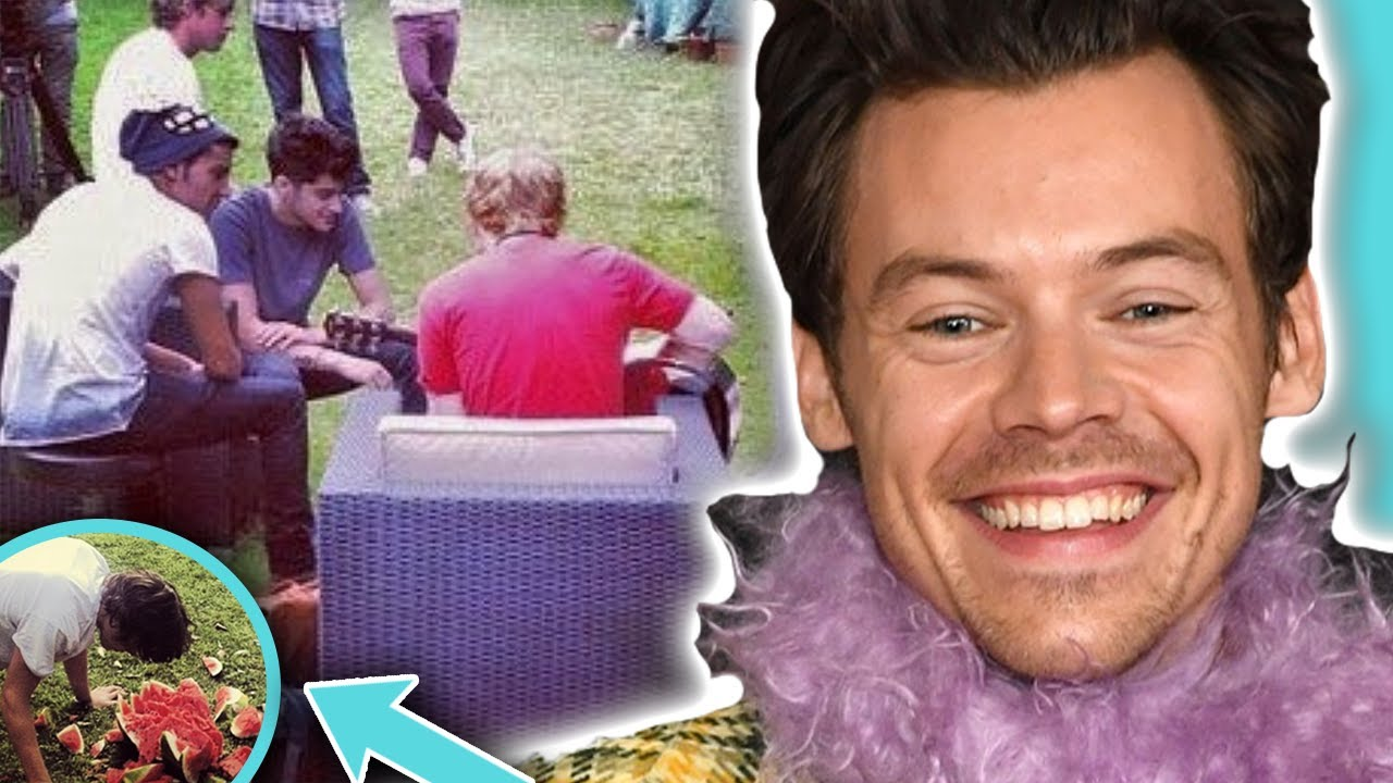 Did Harry Styles Write 'Watermelon Sugar' About A One Direction Member?! | Hollywire