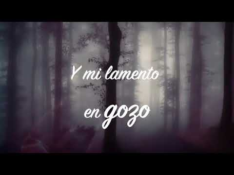 Me Diste Amor Danny Berrios Youtube