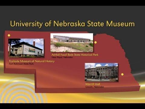Discover University of Nebraska State Museum