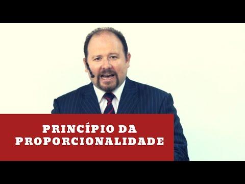 Principio da proporcionalidade nas prisГµes cautelares