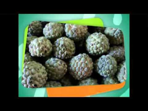 fruta ata faz mal pra gripe