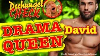 Dschungelcamp 2016: David Ortega (Ich bin ein Star/ IBES-Kandidaten)