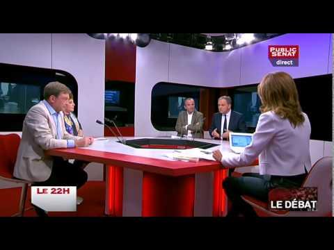 Droit d'asile, trains intercités, hommage aux 4 résistants à la Sorbonne - Le 22h (26/05/2015)