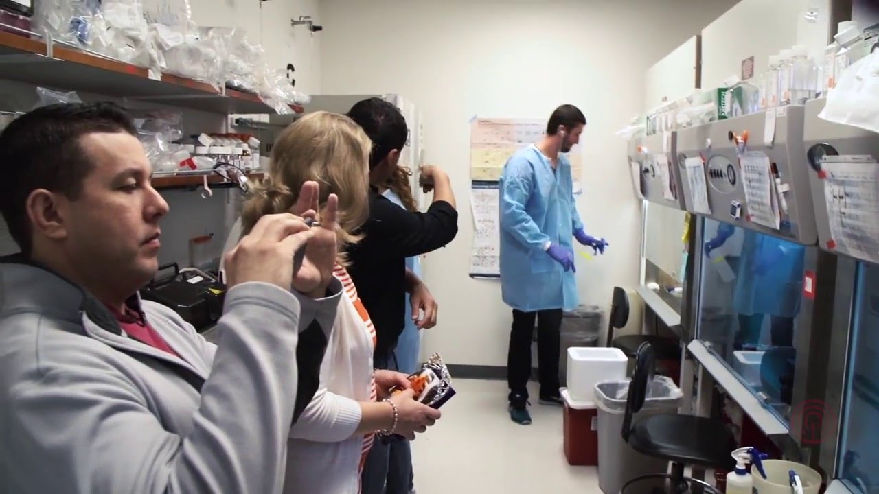 Stem Cell Research at UCSD Explores CBD as Treatment for Brain Disorders