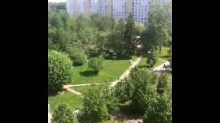 Вид из окна родного дома(, 2010-05-15T08:58:10.000Z)