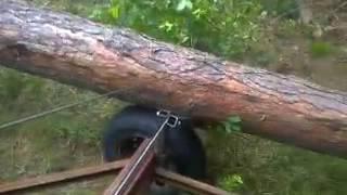 wózek do drzewa