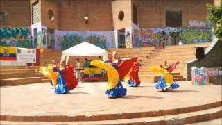 Danzas Folklóricas Venezolanas Araguaney - Alma llanera