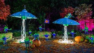 DIY Flying Saucer and Allen Pumpkins
