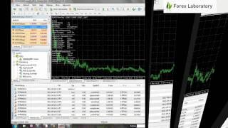 ForexAutoPilot - automatické obchodovanie na Forexe