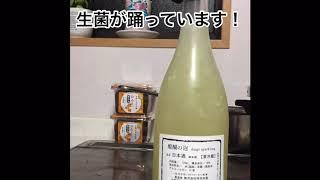 発酵TV#5 寺田本家さんの醍醐の泡をあけてみた!