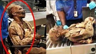 एयरपोर्ट पर पकड़ी गई ऐसी चीज़ें की खोपड़ी घूम जाएगी । Craziest things found by Airport security