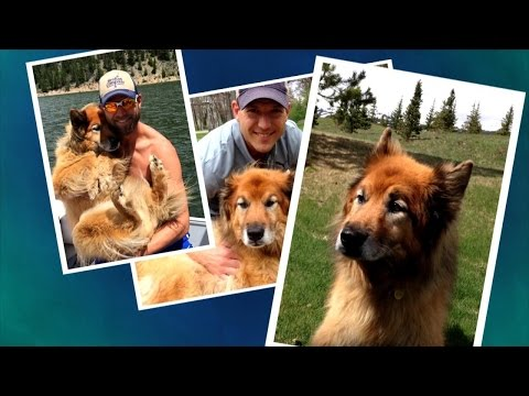 Dr. Travis Shares His Love For His Beloved Dog Nala