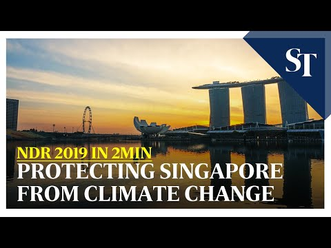 NDR 2019 in 2min: Protecting Singapore from climate change | The Straits Times