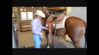 How to Properly Unsaddle Your Horse