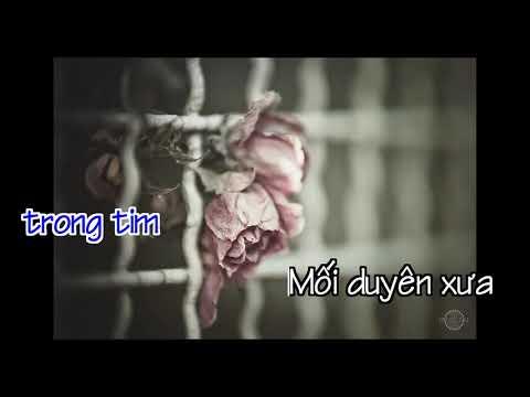 Karaoke Nụ Hồng Mong Manh   Như Quỳnh