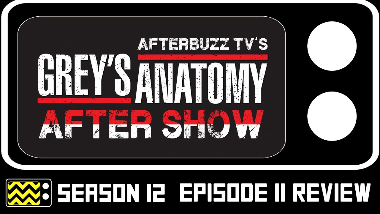 Grey\'s Anatomy Season 12 Episode 11 Review & After Show | AfterBuzz ...