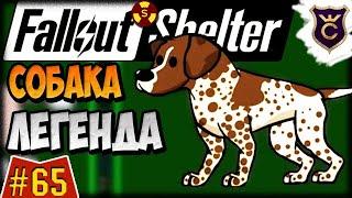 Задание на Легендарную Собаку ∎ Fallout Shelter Выживание #65