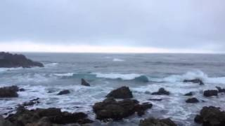 Where is the Best Place to Stay in Monterey, CA