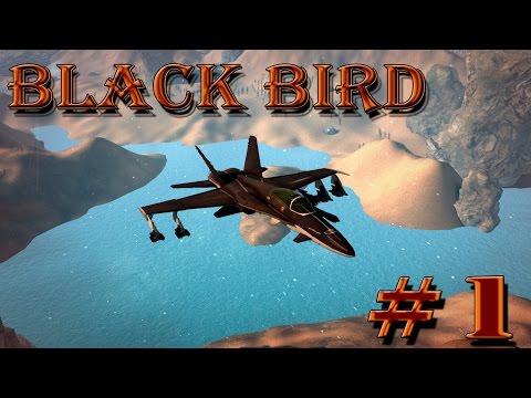 игра Black Bird вконтакте