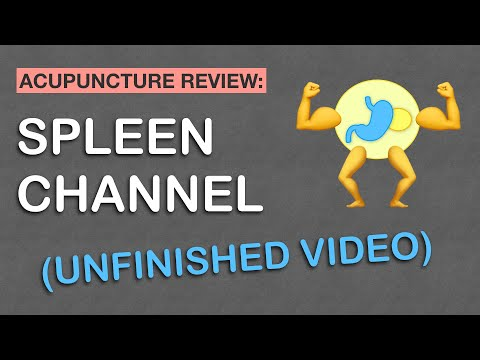 Spleen Channel Acupuncture Meridian (Unfinished Video)