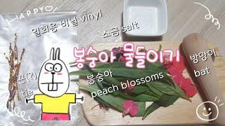 예로우원 TV #peach blossoms 봉숭아물드리…