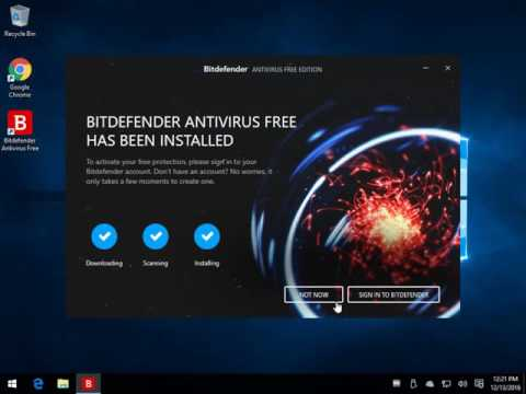 Installing and Using BitDefender Free