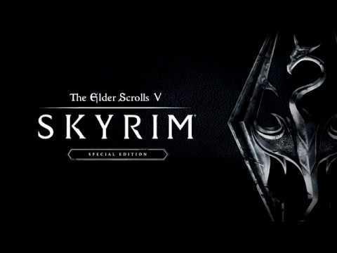 Skyrim специальное издание вылетает