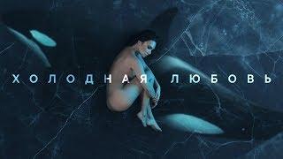 """MOLLY - Холодная любовь (Альбом """"Косатка в небе"""", 2019)"""