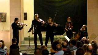Antonio Vivaldi Quattro Stagioni Primavera - Danza pastorale