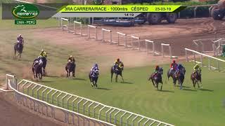 Vidéo de la course PMU HANDICAP TURF