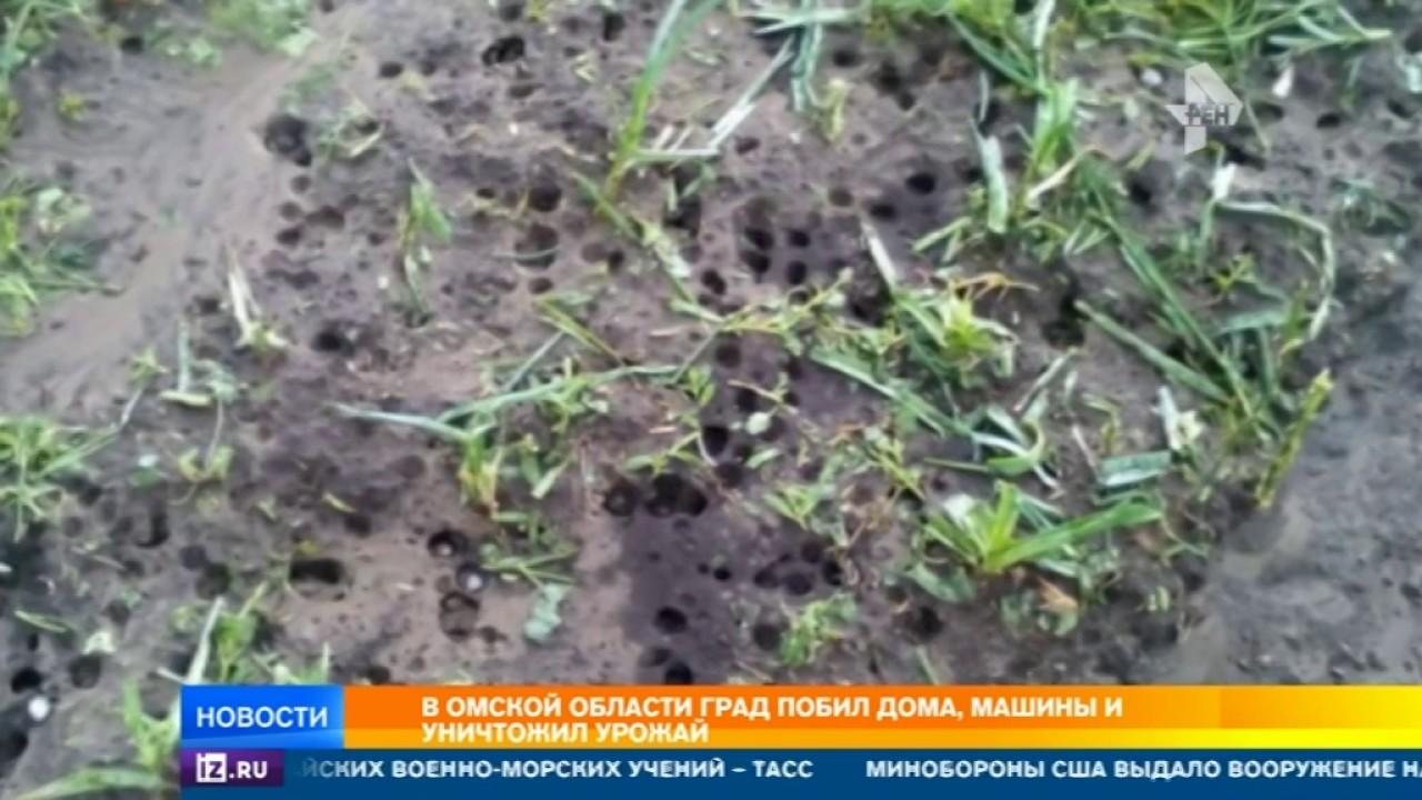 В Омской области чудовищный град побил дома, машины и уничтожил урожай