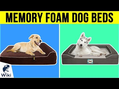 10-best-memory-foam-dog-beds-2019