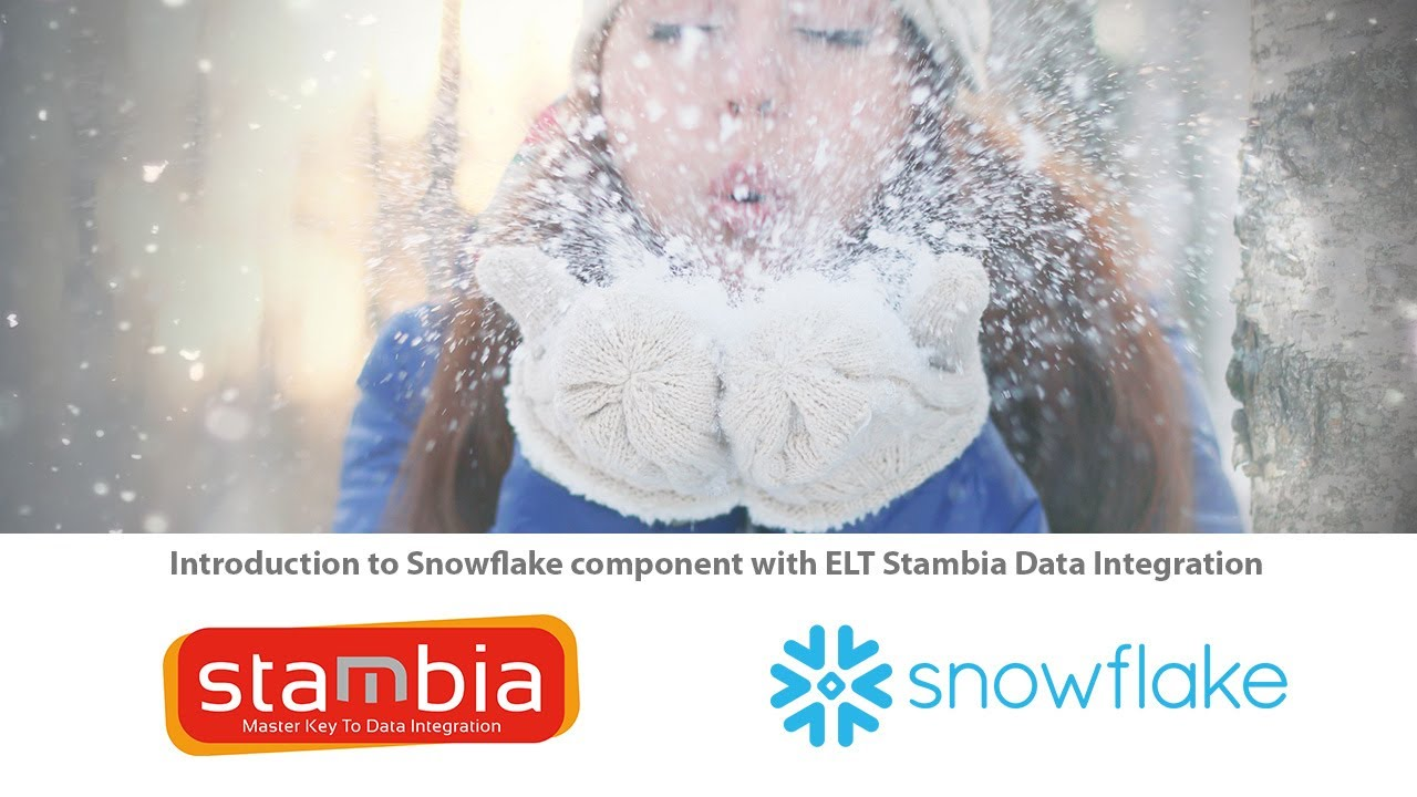 Integrate all your data in a data warehouse Snowflake in the