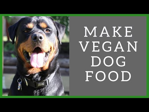 HOW I MAKE MY VEGAN DOG FOOD || PLANT BASED DOG