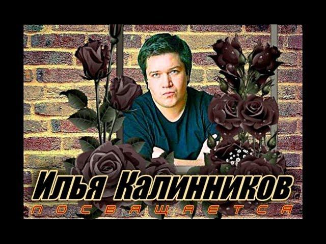 В память о Илье Калинникове   - Алексей Доктор Леший -  бард