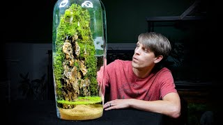 Giant Moss Dripwall Terrarium with a Pond