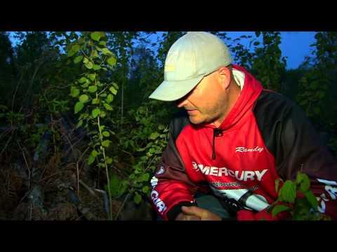 Morel Mushroom Hunting In Minnesota