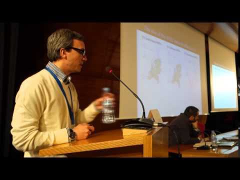 The North Sea Transnational Grid, Rodrigo Teixeira Pinto (TU Delft Netherlands, CITCEA-UPC)
