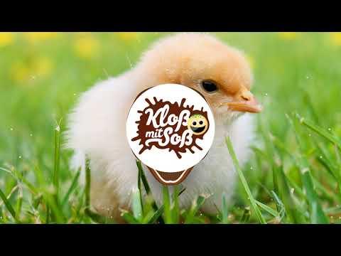 Vogelwiese Remix