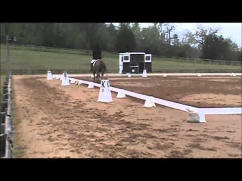 Texas Rose Horse Park Spring HT
