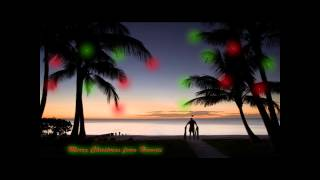Winter Wonderland / Hawaiian Santa - The Makaha Sons (Lyrics o…