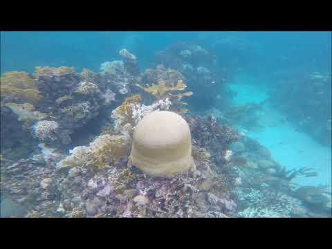 Mesoamerican Barrier Reef System