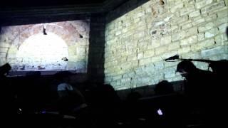 Arms and Sleepers - The Architekt, live @ Baia Turceasca, Iasi