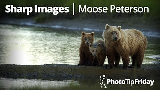 """Photo Tip Friday: Moose Peterson """"Getting Sharper Images"""""""