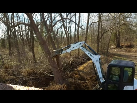 Bobcat e35i Mini Excavator Taking down Big Black Locust Trees & clearing trees