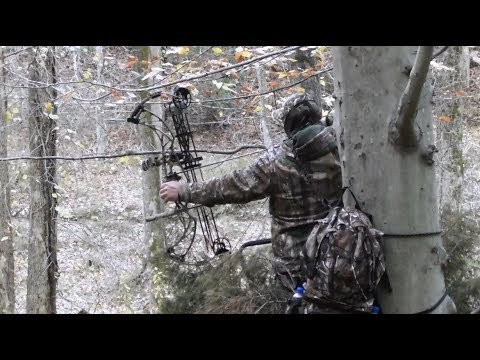 E189 Bow Hunting Whitetails In Maryland (Bogenjagd), With Andy Malota