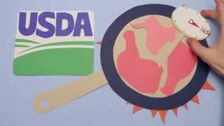 How salmonella spreads from farm to table